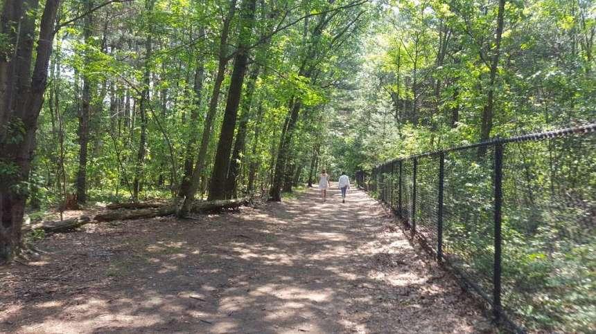 Reservoir Walking Trail / Dog Walk, 117 Ash St, Weston, MA 02493, USA