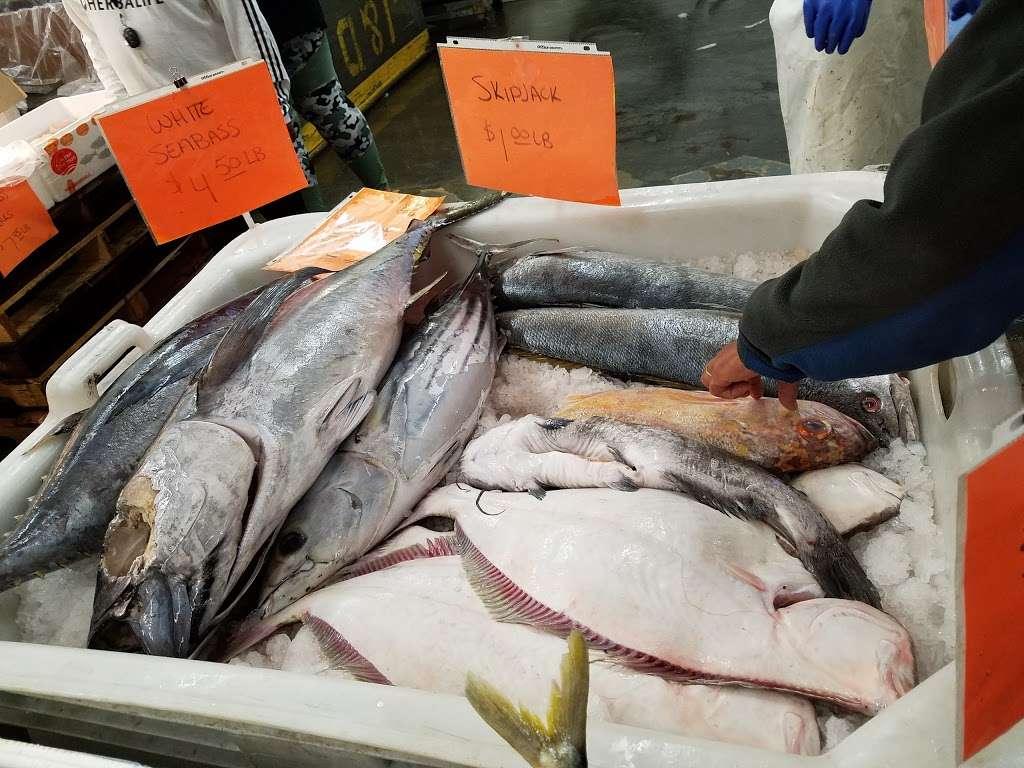 Fresh Market Salmon Price