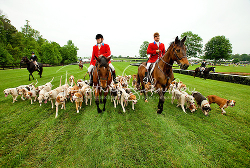 Photo of fox and hound riders.
