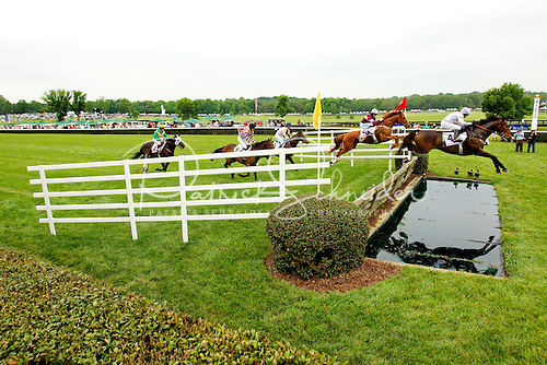 Photography of steeplechase horses clearing hurdle and water jump.