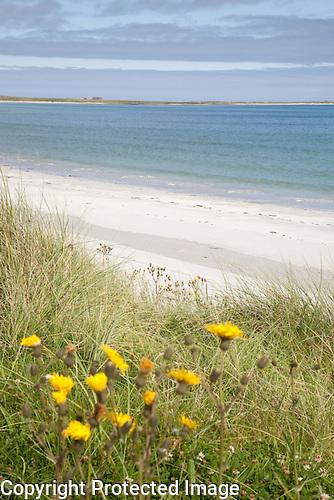 Lopness Bay, Sanday, Orkney Islands, Scotland