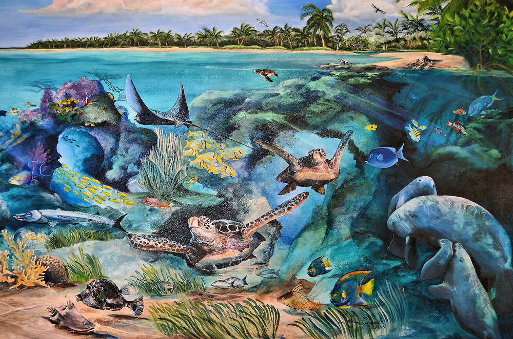 Colorful Coral Reef Drawings