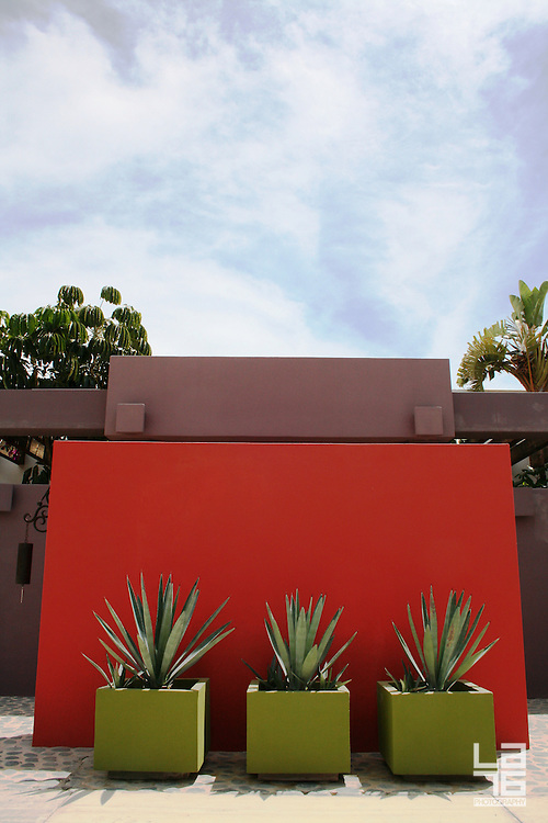 Red interior patio wall with green agave   LA76, lifestyle ... on Green Wall Patio id=82441