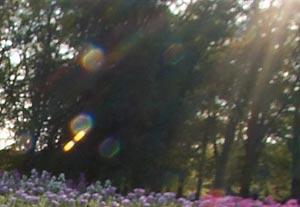 Lens Flare 3