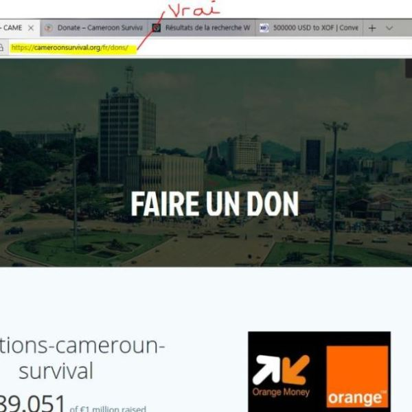 Clonage_Site_Cameroonsurviva
