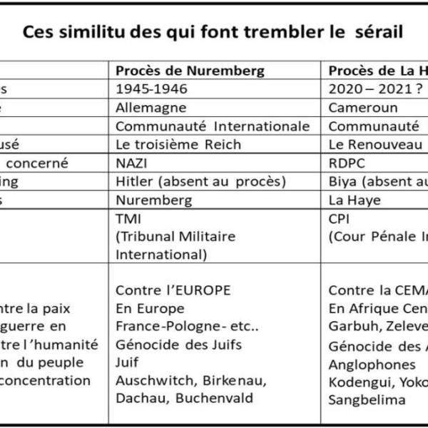 Le Procès de Nuremberg Plane sur le Cameroun : Panique Hystérique dans le Sérail