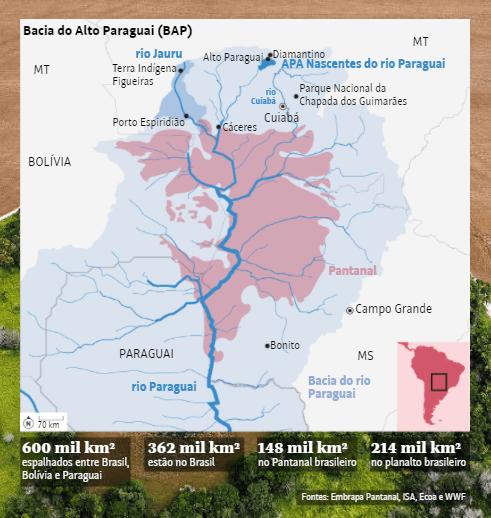 Hidrelétricas, desmatamento e agrotóxico formam tripé de ameaças contra o Pantanal