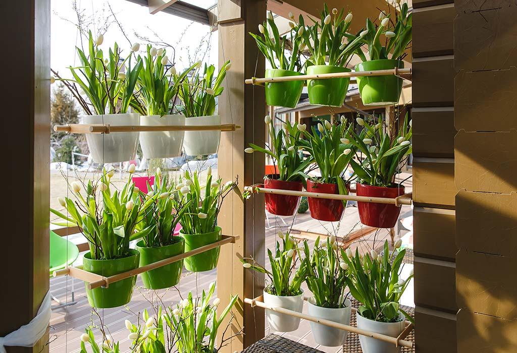 Vertical Gardening Ideas on Gardening  id=34362