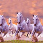 Reasons To Keep Running Horse Painting As Per Vastu Shastra