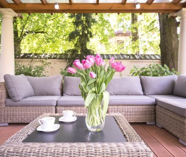 Patio Furniture In A Modern Garden With Bright Pink Flowers