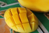 a honey mango cut open and sliced into cubes with another half behind.