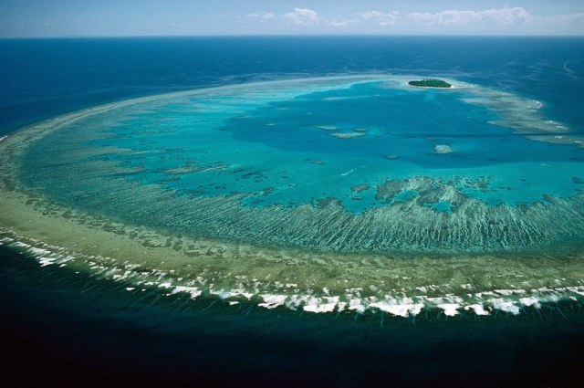 澳大利亚:大堡礁保护进展堪忧- 中外对话