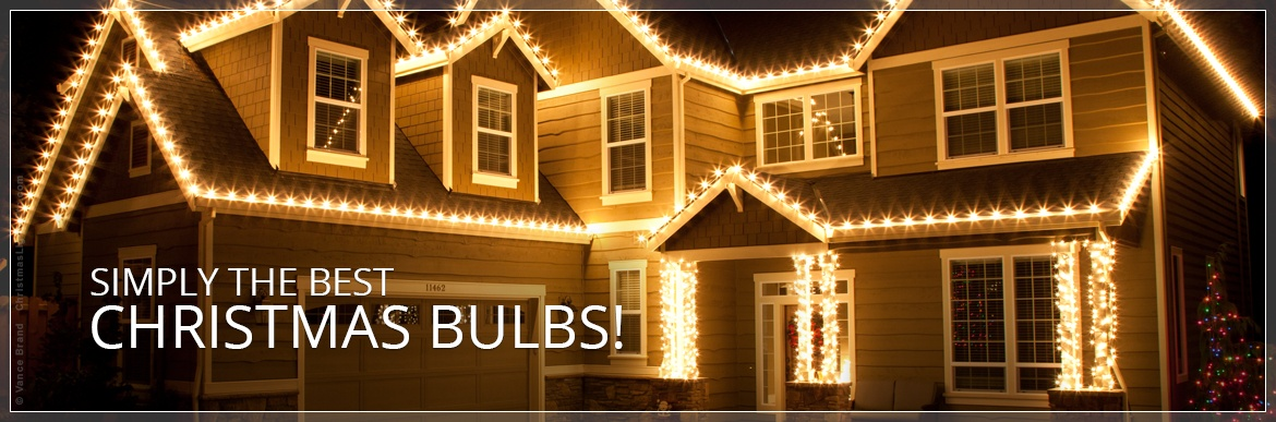 Frosted Bulb Christmas Lights