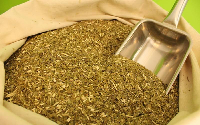 El Gobierno controlará la producción de Yerba Mate por exceso de palo y polvo en los paquetes