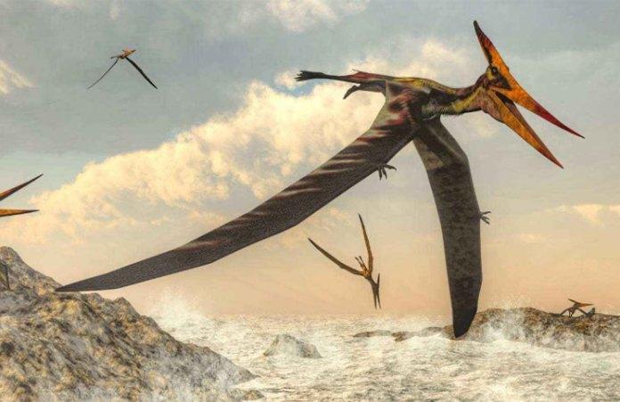 Encontraron unos restos de dinosaurios en Alaska (y los arqueólogos no saben cómo llegó hasta ahí)
