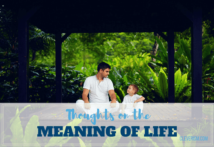 Thoughts on the Meaning of Life
