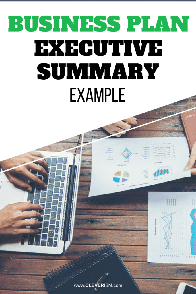 information technology business plan executive summary