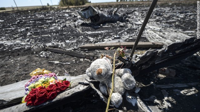 Flowers and a teddy bear, left by parents of an Australian victim of the crash, laid on a piece of the Malaysia Airlines plane MH17 in eastern Ukraine.