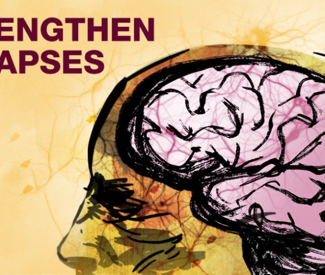 Supplements Like Dha And Citicoline May Help Strengthen The Connections Between Your Brain