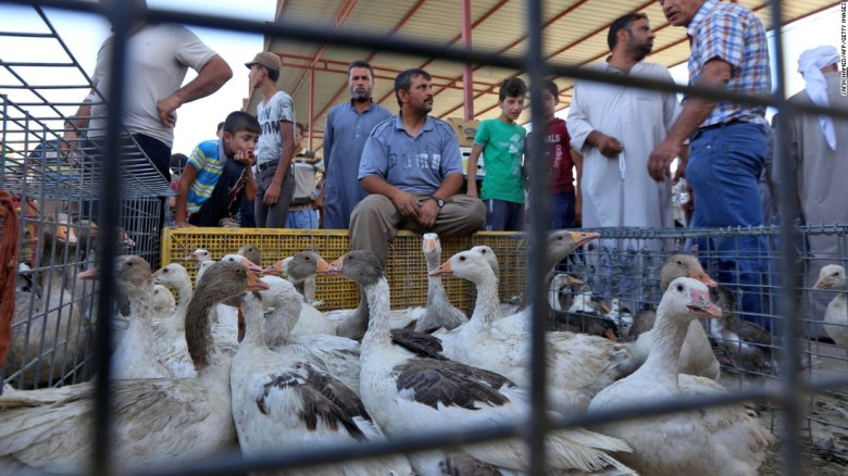 People shop for poultry at a market in Mosul's Gogjali neighborhood.