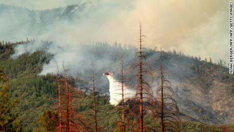 As grasses have been replaced by shrubs and trees in California, the risk of large fires -- such as this one that took place in the Stanislaus National Forest on July 22, 2018 -- has grown.