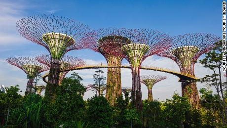 Gardens by the Bay is one of Singapore's many green intiatives. The 'supertrees' act as vertical gardens, featuring tropical flowers and solar panels.