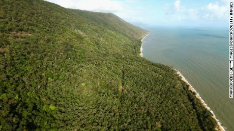 The suspected asylum seekers are believed to have come ashore in heavily wooded north Queensland.