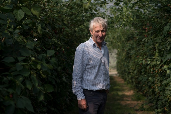 Robert Pascall relies on pickers from Romania and Bulgaria to harvest fruit on his farm.