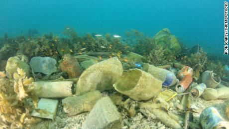 Un estudio halla que los microplásticos se encuentran en las heces humanas