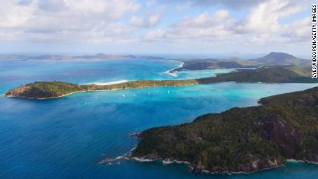 Australian authorities killed 6 sharks in September after two attacks in Whitsunday.