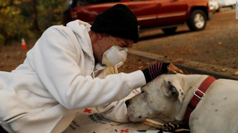 Evacuee Brian Etter and his dog Tone, who escaped the Camp Fire on foot, rest on November 11 in the parking lot of a Chico church.