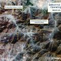 Sakkanmol-Missile-Bases-map