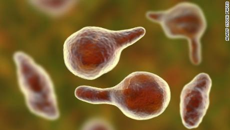 Superbugs 'as big a global threat as climate change and warfare'