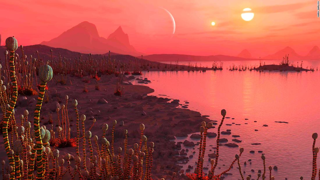 An artist's impression of life on a planet in orbit around a binary star system, visible as two suns in the sky.