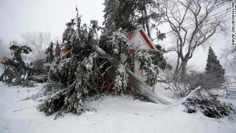 Trees snapped by strong winds from a late winter storm and covering hurricane force winds and snow cover the Eugene Field House at Washington Park on Wednesday in Denver. (AP Photo / David Zalubowski)