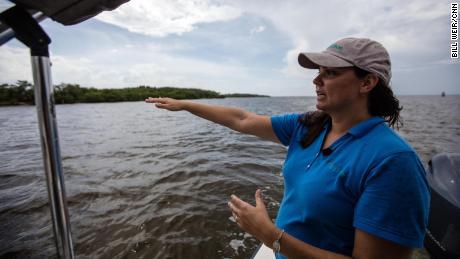 Audubon scientist Brooke Bateman looks at the birds in the Alafia Bank Sanctuary near Tampa.