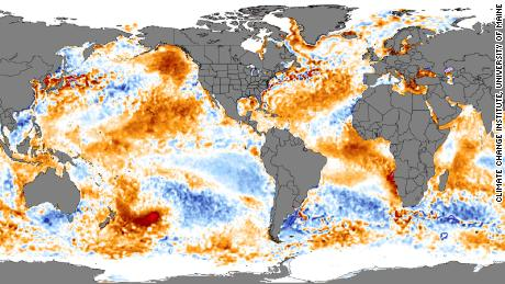 There is an area of hot sea water the size of Texas off the coast of New Zealand