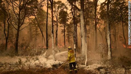A firefighter burns out a blaze in  the New South Wales town of Jerrawangala.