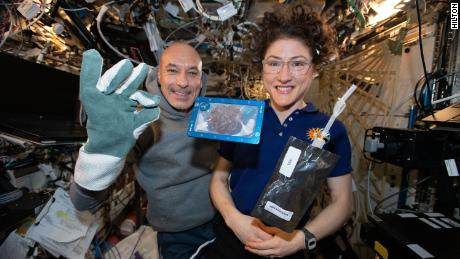 Fresh-baked chocolate chip cookies, another first in space
