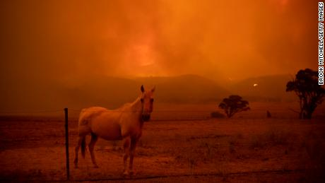 Australia Australia's climate crisis has been raging for years, but no one has heard of it