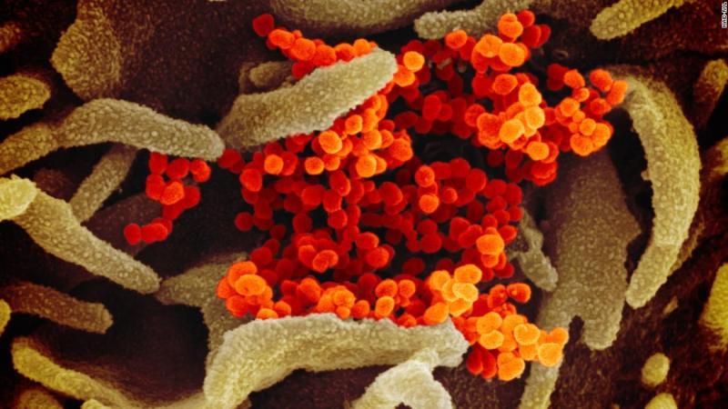 October 26 coronavirus news