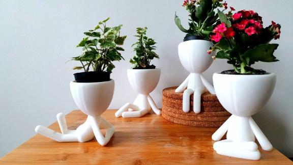 Figure Plant Pot