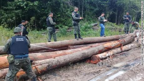 Deforestation in the Amazon is accelerating despite coronavirus