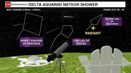 North American stargazers should look to the low, southern horizon for the best Delta Aquariid meteor viewing.