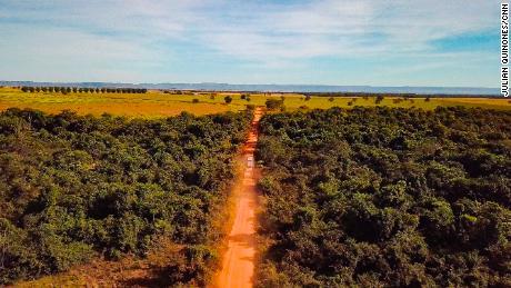 โคโรนาไวรัสและการตัดไม้ทำลายป่าทำลายผู้คนของบราซิลและปอดของโลก