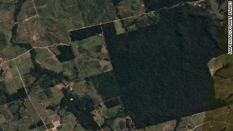 ภาพถ่ายดาวเทียมของ Itaituba ก่อนการตัดไม้ทำลายป่าในวันที่ 20 มิถุนายน 2020