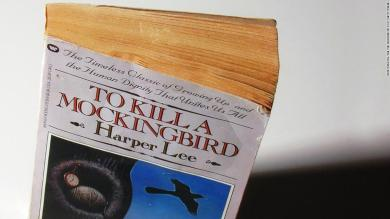 Judge cites 'To Kill a Mockingbird' in bird policy ruling
