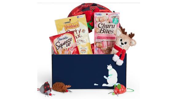 Goody Box Holiday Toys and Treats