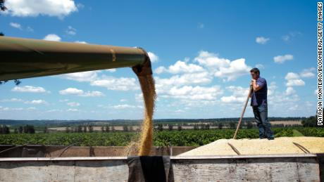 A farmer watches as soybeans are unloaded into a truck during a harvest in Santa Cruz do Rio Pardo, Sao Paulo state, Brazil.