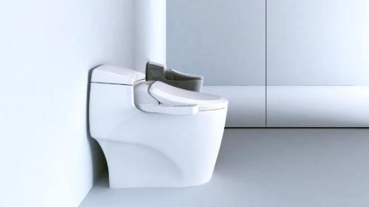 BioBidet Ultimate Advanced Bidet Toilet Seat